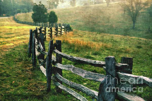 Sunrise Meadow - Blue Ridge Parkway II Print by Dan Carmichael