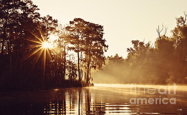 Sunrise On The Bayou Print by Scott Pellegrin