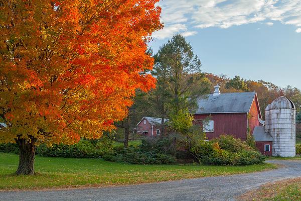 Sunrise On The Farm Print by Bill  Wakeley