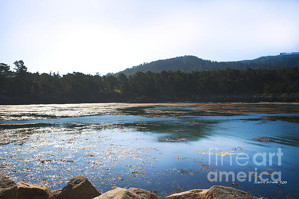 Sunrise Over Whaler's Cove At Point Lobos California Print by Artist and Photographer Laura Wrede