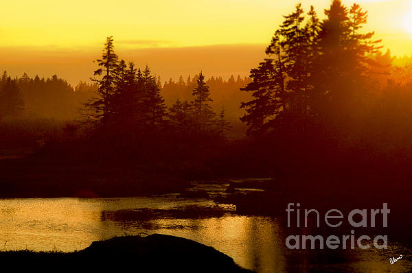 Sunset Print by Alana Ranney