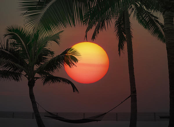Sunset In The Keys Print by Bill Cannon