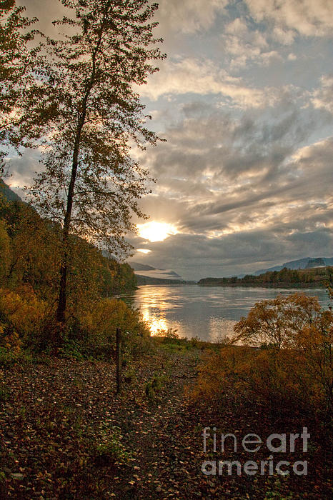 Sunset On The Columbia Print by Cari Gesch