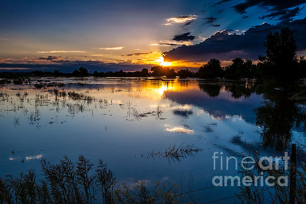 Sunset Reflections Print by Steven Reed