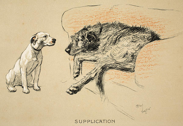 Supplication Print by Cecil Charles Windsor Aldin