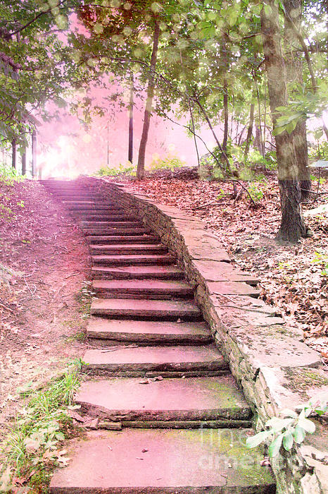 Kathy Fornal - Surreal Pink Fantasy Dream Staircase In Woodlands Forest - Pink Stairs Pathway