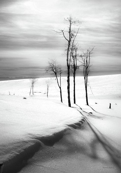 Surreal Snowscape 2 Print by Theresa Tahara