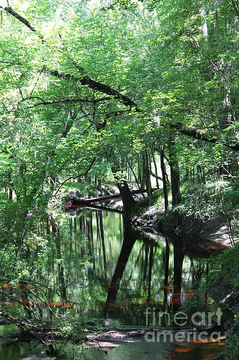 Suwanee River Reflections Print by Theresa Willingham