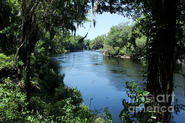 Suwanee River View Print by Theresa Willingham
