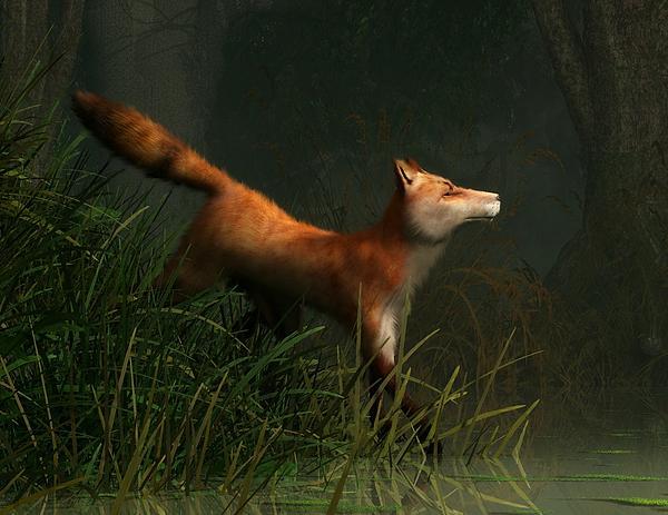 Swamp Fox Detail Print by Daniel Eskridge