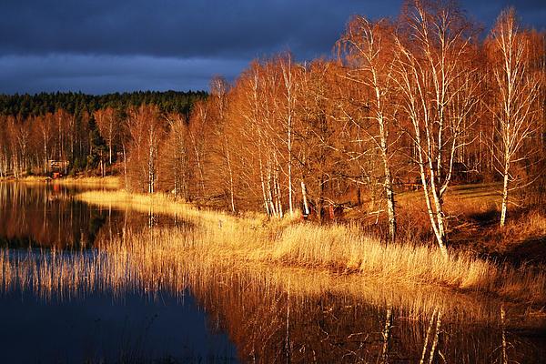 Fredrik Ryden - Swedish Sunset