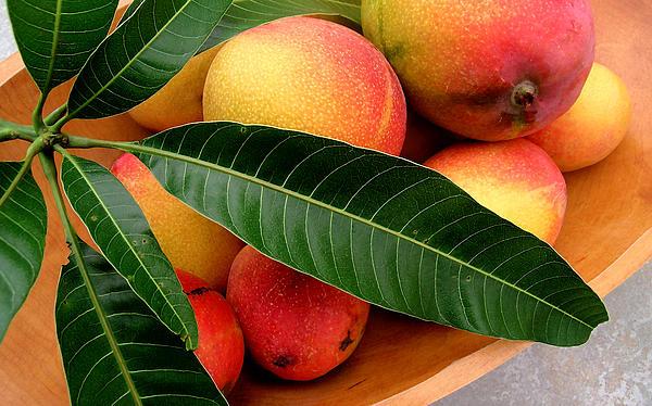 Sweet Molokai Mango Print by James Temple