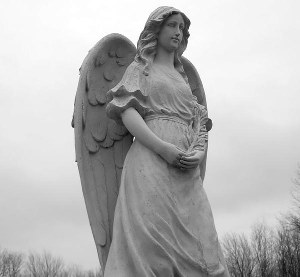 Sweet Seraphim Print by Rachel E Moniz