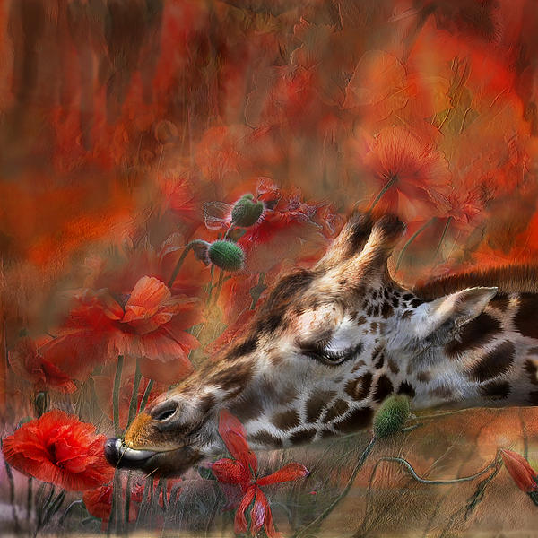 Carol Cavalaris - Sweet Taste Of Spring