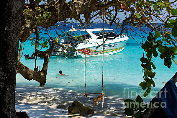 Swing over water by kaye menner for Swing over water