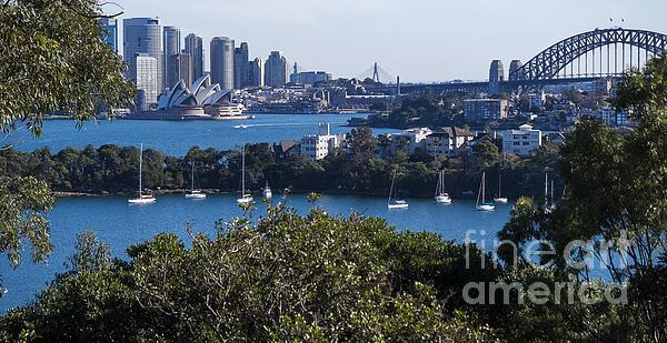 Sydney Harbour Print by Steven Ralser