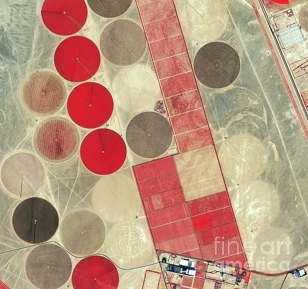 Tadco Farm Saudi Arabia Satellite Print by GeoEye