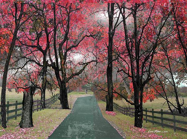 EricaMaxine  Price - Take Me Home Country Roads