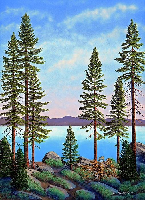 Tall Pines Of Lake Tahoe Print by Frank Wilson