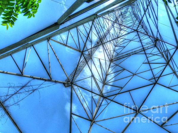 Tangled Web Print by MJ Olsen