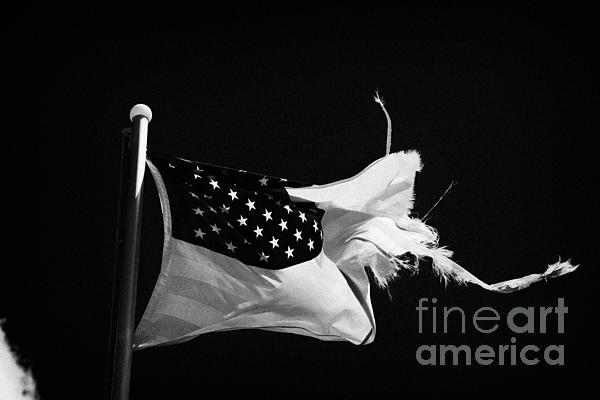 Tattered Torn Worn Us Flag Flying From Flagpole Print by Joe Fox