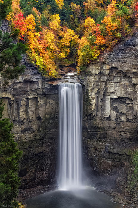 Taughannock Print by Mark Papke