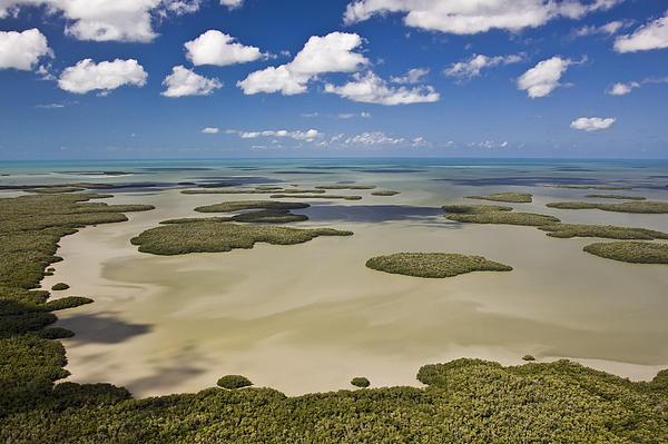 Patrick M Lynch - Ten Thousand Islands