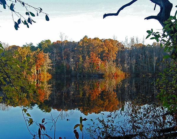Pamela Peters - Tennessee Autumn