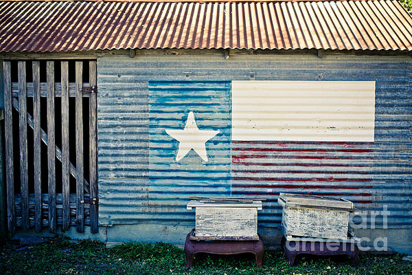 Texas Love Print by Will Cardoso