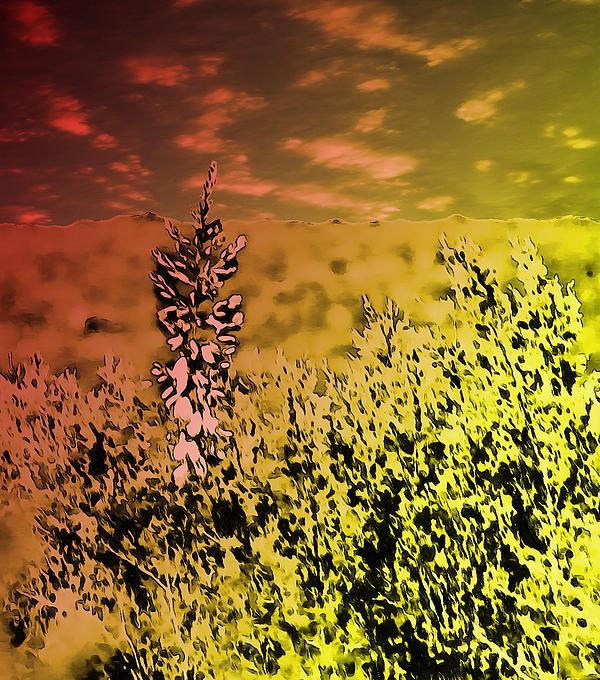 Texas Yucca Flower Print by Bartz Johnson