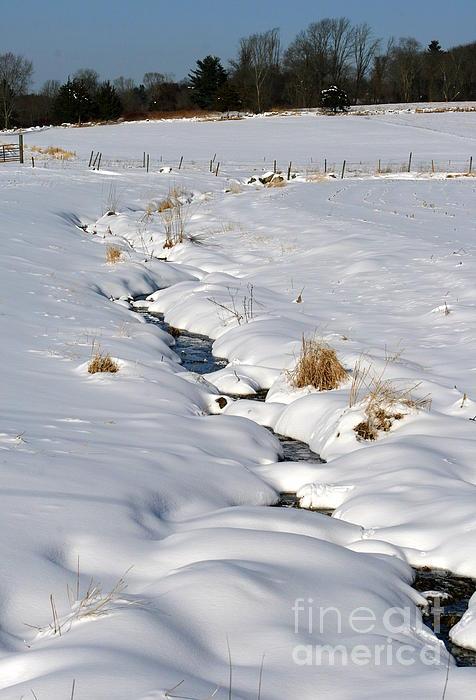 Neal  Eslinger - Textured Winter Blues