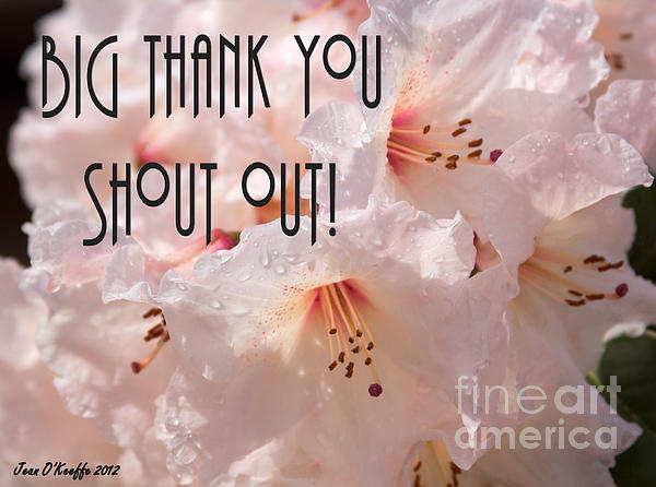 Jean OKeeffe - Thank You Shout Out - Greeting Cards by Jean O