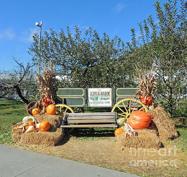 The Apple Barn Harvest Scene By Marian Bell
