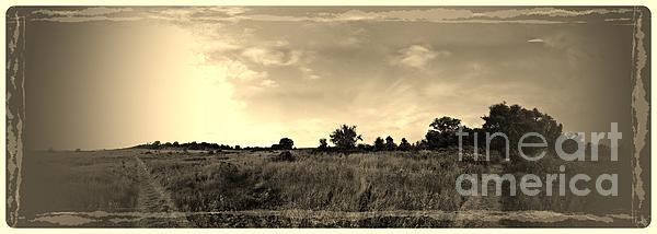 The Back Pasture Print by Garren Zanker