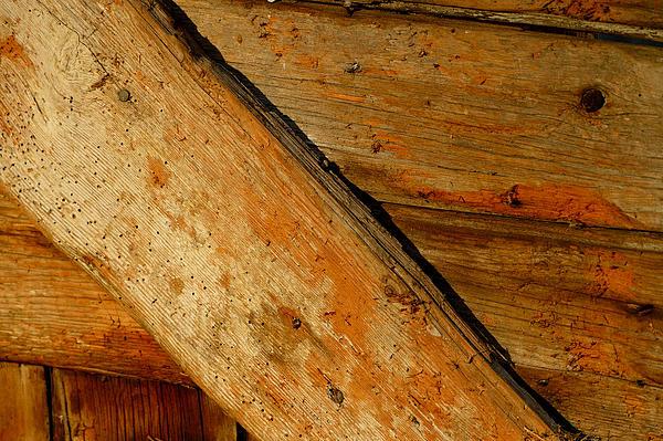The Barn Door Print by William Jobes