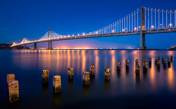 The Bay Lights Print by Alexis Birkill