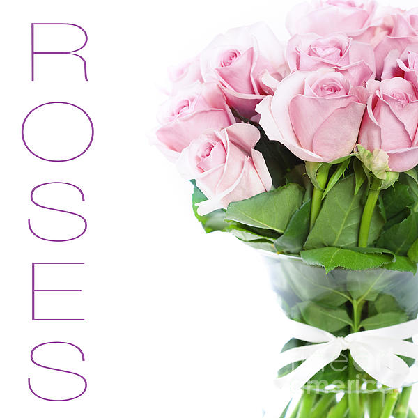 The Beautiful Pink Roses Print by Boon Mee