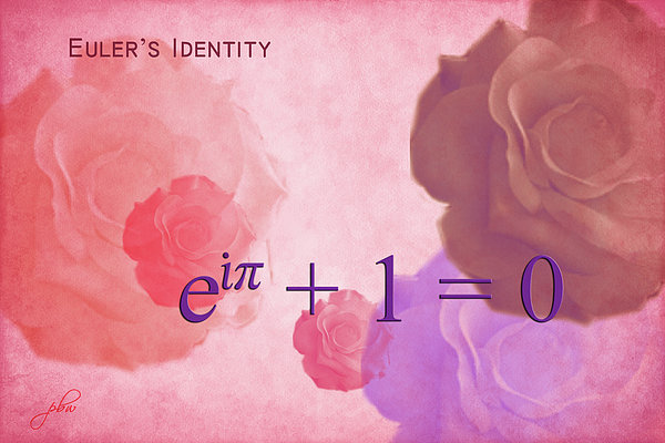 The Beauty Equation Print by Paulette B Wright