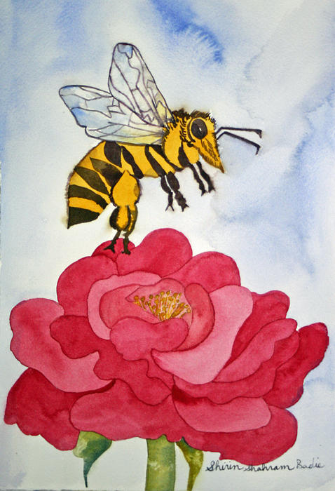 Shirin Shahram Badie - The Bee and The Rose