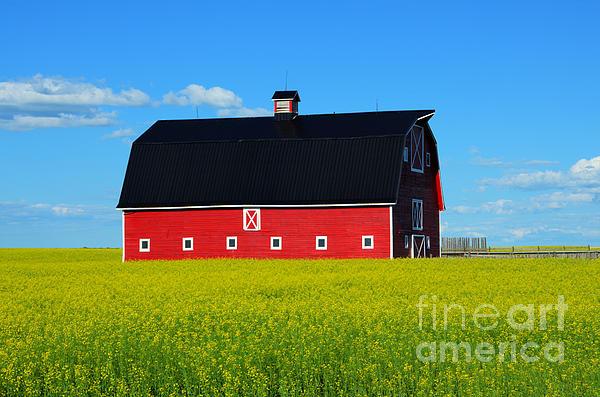 Bob Christopher - The Big Red Barn