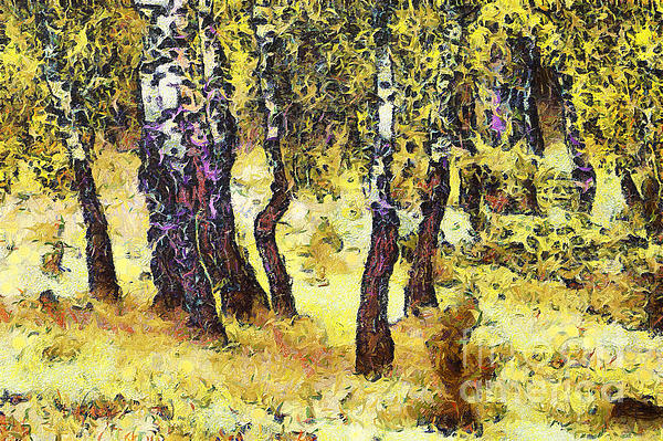 The Birch Forest Print by Odon Czintos