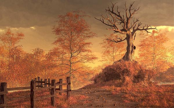 The Dead Tree Print by Daniel Eskridge