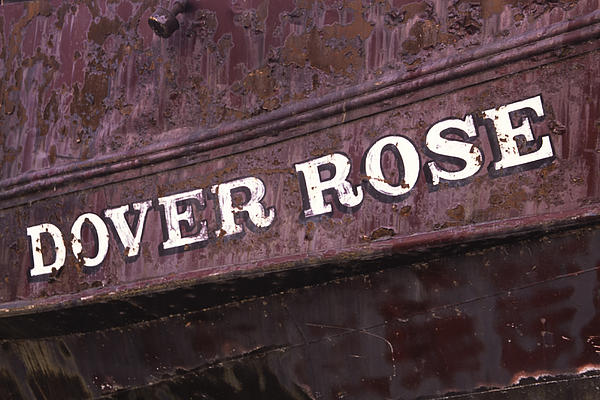 Gary Hall - The Dover Rose