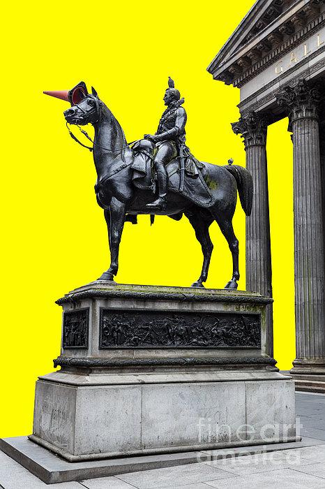 The Duke Of Wellington Yellow Print by John Farnan