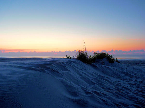 The Dunes Print by JC Findley