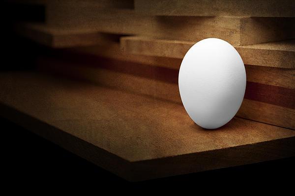 The Egg Print by Tom Mc Nemar