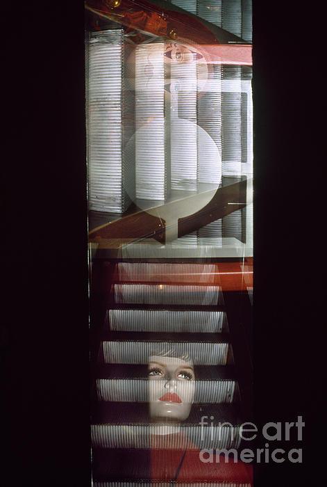 Thomas Carroll - The Escalator Geists