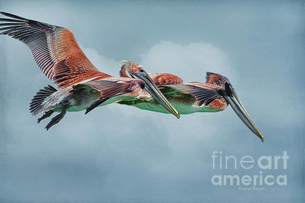 Deborah Benoit - The Flying Pair