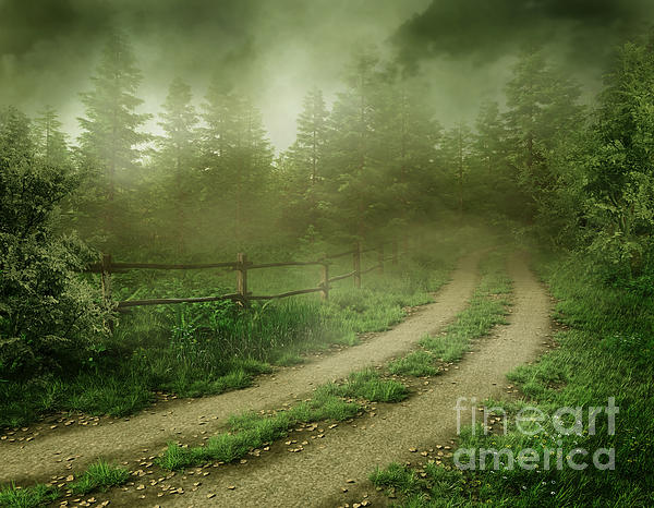 The Foggy Road Print by Boon Mee