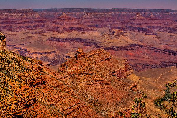 The Grand Canyon Iv Print by David Patterson